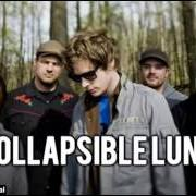 Album Collapsible lung