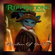 Album Best of the rippingtons