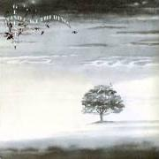 Album Wind and wuthering