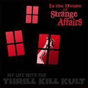 My Life With The Thrill Kill Kult